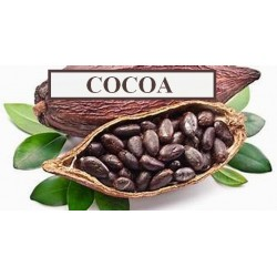 COCOA CONCENTRATE