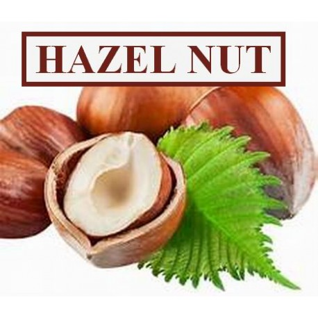 HAZEL NUT CONCENTRATE