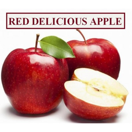Apple ( RED DELICIOUS )